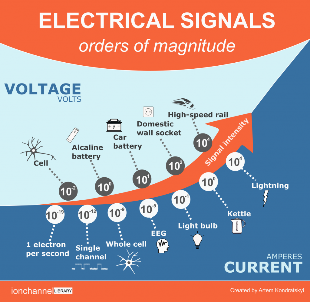 electrical signals infographic